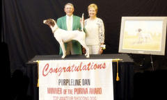 Purina Top Shooting Dog Amateur Award