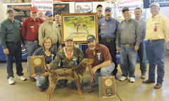Outstanding Bench Show Coonhound Award