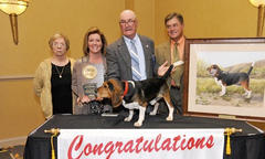 Outstanding Field Trial Brace Beagle Award