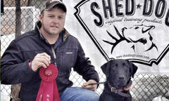 Qualified for the World Shed Dog Competition