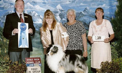 Shannalee Waller-Michalsky of Akadia Shelties