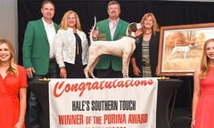 2019 Purina Bird Dog & Shooting Dog Winners