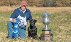 national-derby-amateur-open-retriever-champions-wow-to-win