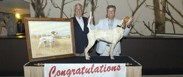 Top Field Trial Bird Dog Award