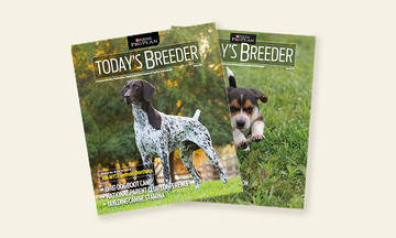 todays-breeder-homepage-500x300
