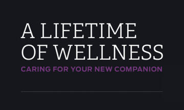 Image that says A lifetime of wellness